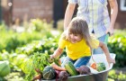 Gardening with Kids: Get Down to New Possibilities