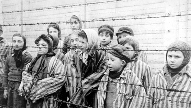 From Auschwitz to America