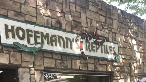 Hoffmann's Reptiles, Concord's Last Independent Pet Store