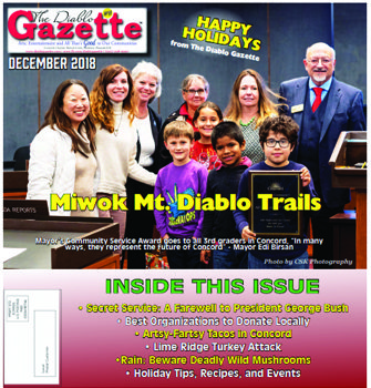 Diablo Gazette December 2018