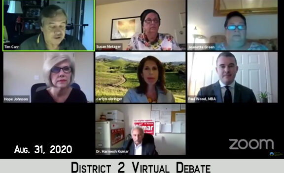 District 2 candidates square off in Virtual Debate