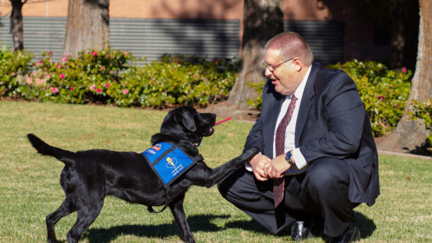 The Making of the First Diabetic Alert Dog Program