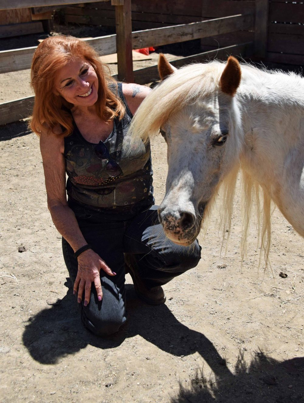 Changing Lives, One Miniature Horse at a Time