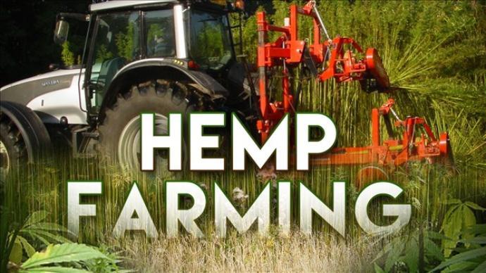 California Okays Hemp for Farmers