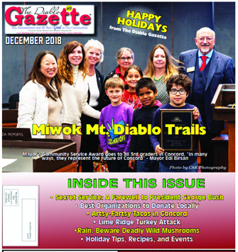 Diablo Gazette December 2018