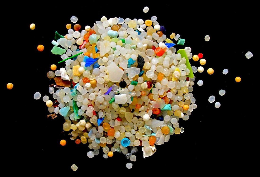 Laundry and Other Activities Contribute Microplastics into Our Food Supply