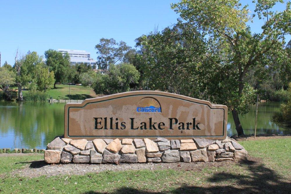 Ellis Lake Park Debate: Improvements vs. Displacement